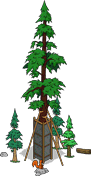 World's Largest Redwood Level 6.png