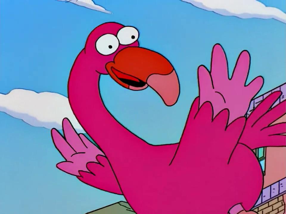 Фламинго прикольные картинки