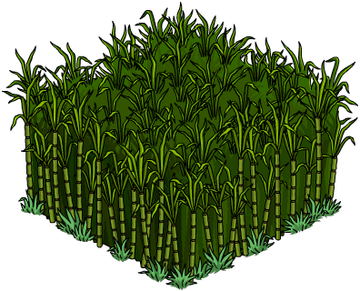 Tapped Out Cane Field.png