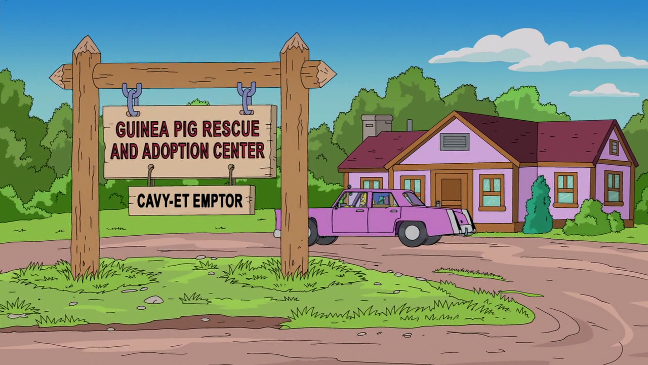 Guinea Pig Rescue Center .png
