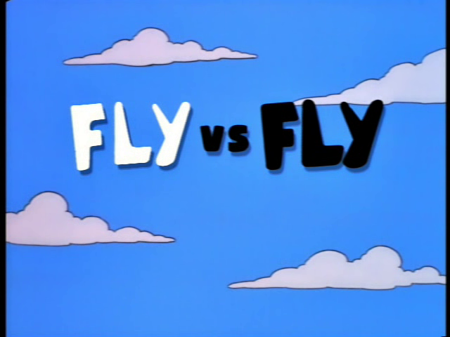 Fly vs. Fly - Title Card.png