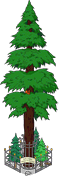 World's Largest Redwood Level 10.png
