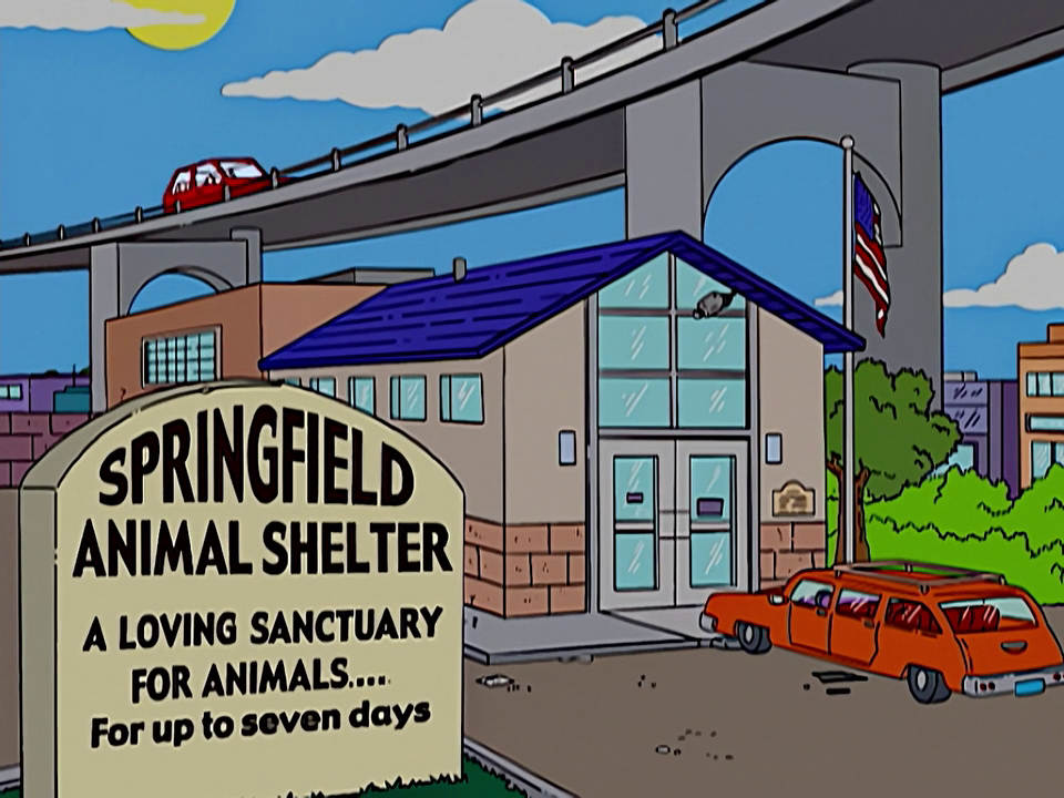 Springfield animal shelter.png