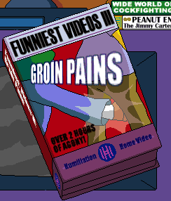Funniest Videos III Groin Pains.png
