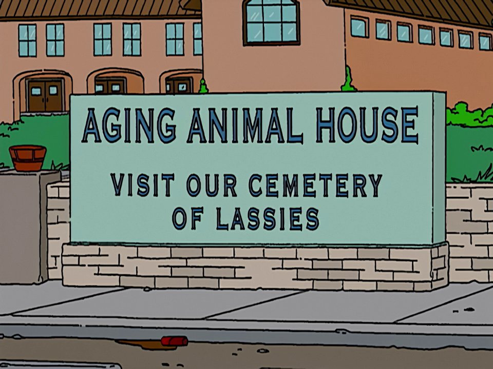 Aging Animal House.png
