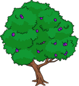Tapped Out Plum Tree.png