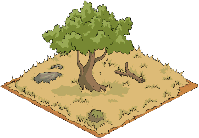 Shady Tree.png