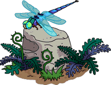Dragonfly Rock.png