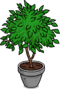 Tapped Out Ficus Plant.png
