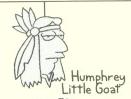 Humphrey Little Goat.png
