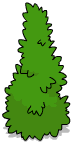Tall Shrub 1.png