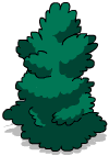 Tall Shrub 3.png