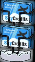 250 SkyCredits.png