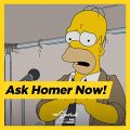 Simprovised Ask Homer Now.jpg