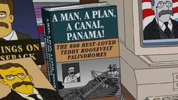 A Man, A Plan, A Canal, Panama.png