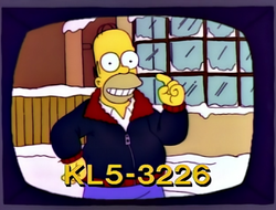 Mr. Plow business.png