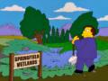 Springfield Wetlands.png