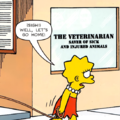 The Veterinarian.png