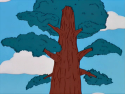 Redwood Tree.png