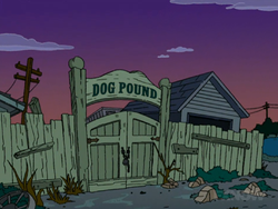Dog Pound.png
