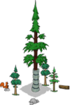 World's Largest Redwood Level 5.png