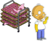 Tray of 132 Donuts Donut Homer.png