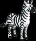 Zebra.png