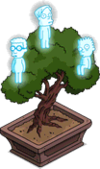 Bonsai Beings.png
