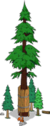 World's Largest Redwood Level 7.png