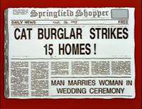 Shopper Cat Burglar Strikes 15 Homes.png