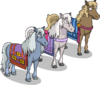 Siddmartha's Ponies.png