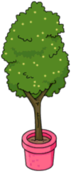 Tapped Out Boardwalk Tree.png