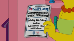 Springfield Municipal Voter's Guide.png