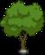Holo-Tree 3.png