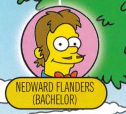 Nedwardflanders.png