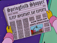 Springfield shopper.png