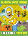 The Simpsons Safety Poster 41.png