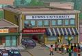 Burns University.png