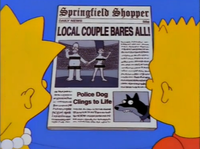 Shopper Local couple Bares all; Police Dog clings to life.png