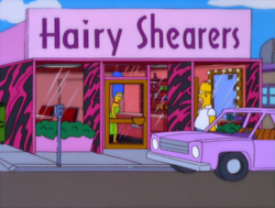 Hairy shearers.png