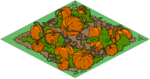 Tapped Out Pumpkin Patch.png