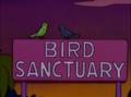Bird Sanctuary.png