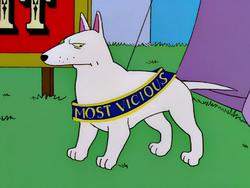 White Dog.png