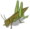 Tapped Out Giant Grasshopper.png