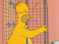 Homer and Apu homer.png