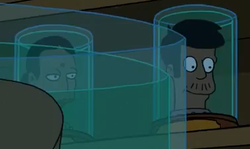 Futurama - Apu and Manjula heads.png