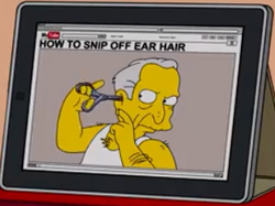 HOW TO SNIP OFF EAR HAIR.png