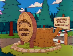 Springfield National Forest.png