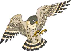 Freedom (Falcon).png