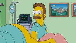 ToddToddWhyHastThouForsakenMe-Homer.png